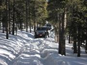 dane_in_deep_snow