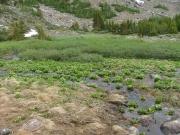 slide_lake_overflow