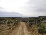 through_the_desert