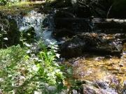 river_in_the_sun