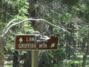 to_griffith_mountain