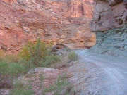 down_in_the_canyon