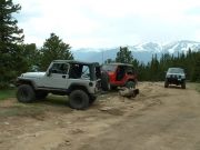 jeeps_in_the_meadow