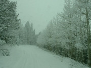 snowy_trail_part_3