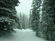 snowy_trail_part_5