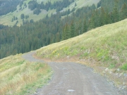 winding_trail
