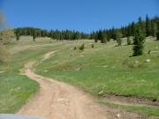 meadow_climb