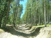 steep_and_rocky