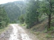 muddy_tracks