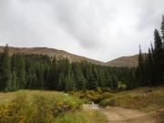 ridge_view