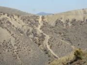 distant_hill_climb