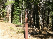 trail_sign_1