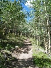 aspen_hike