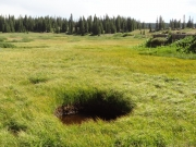 water_hole
