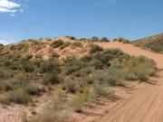 sand_hill