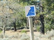 county_road_sign